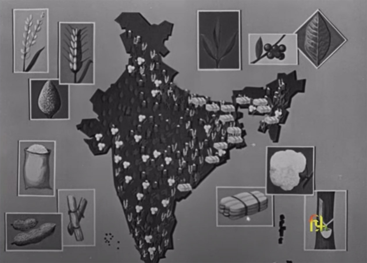 This Our India Thumbnail
