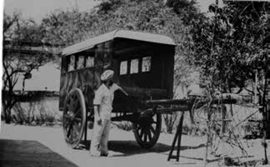 man with film bullock cart