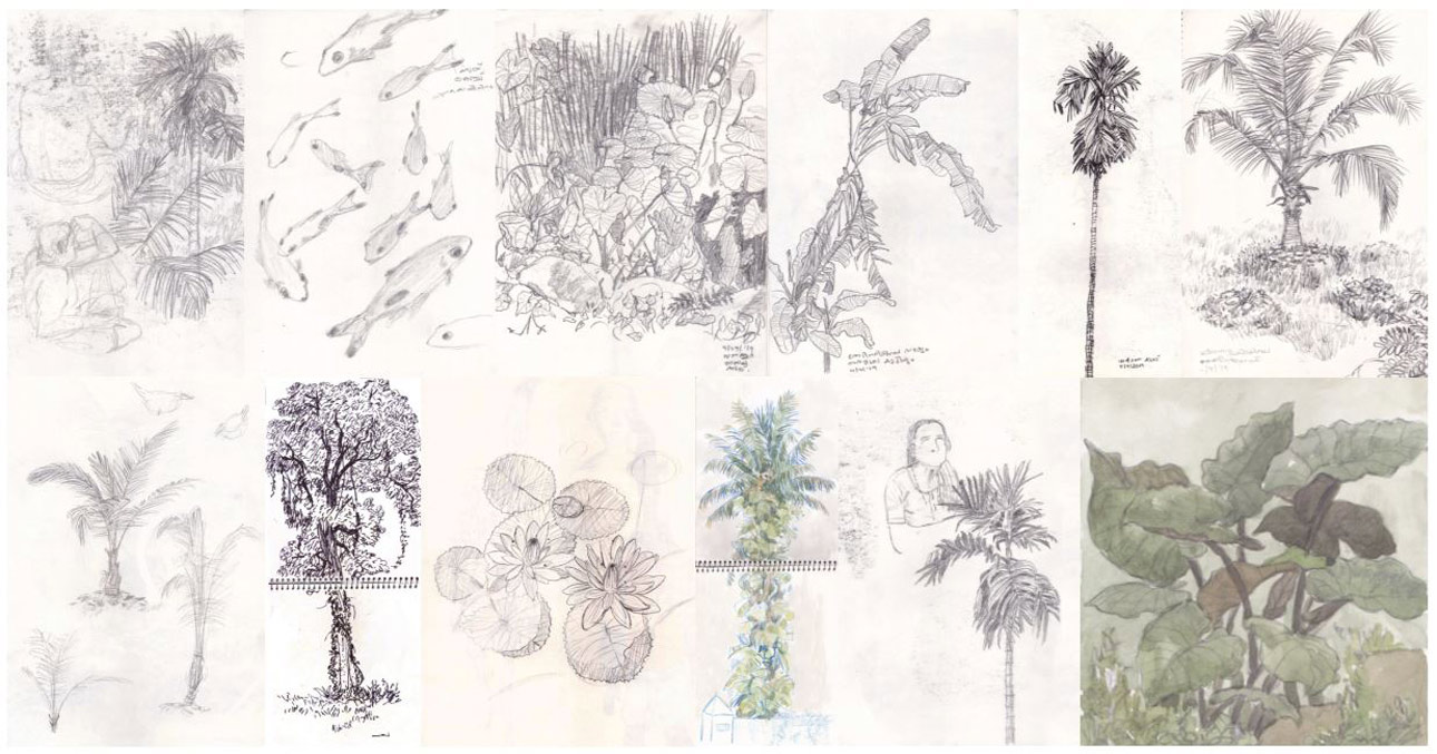10a SoaB_Flora-Study_02