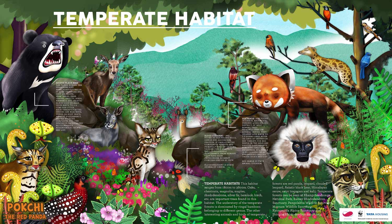 Habitats-Carousel-02