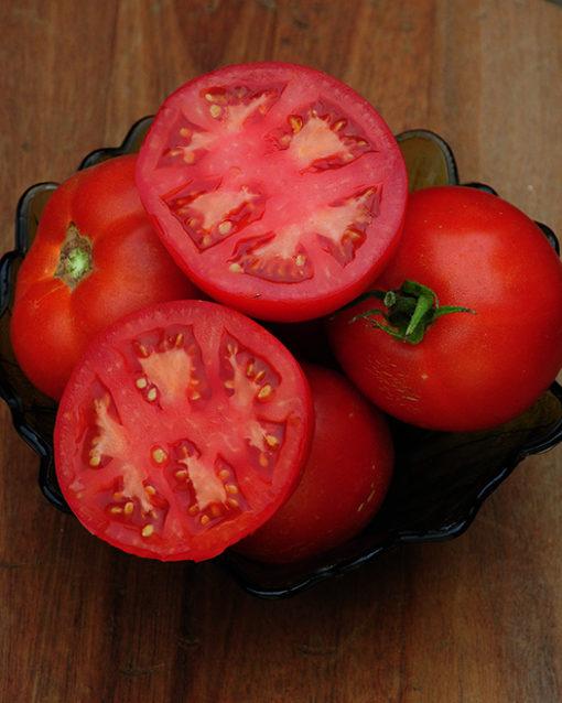Cal Ace Tomato Seeds