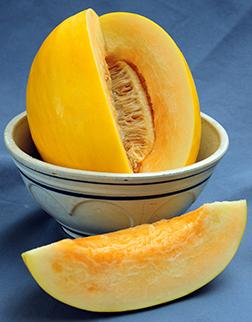 Canary Melon '17