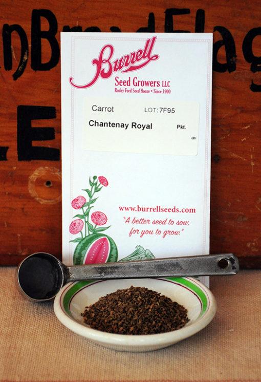 Chantenay Royal Carrot Seeds