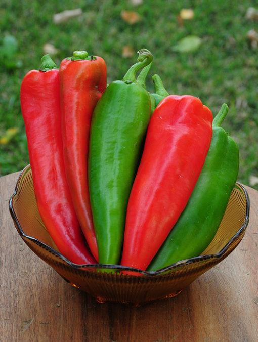 Joe E. Parker Chili Pepper Seeds