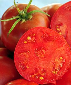 Heirloom Legend Tomato Seeds
