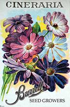 Flowers, Miscellaneous A-L