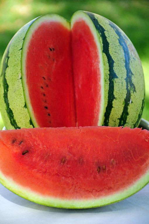 Heirloom Dixie Lee Watermelon Seeds