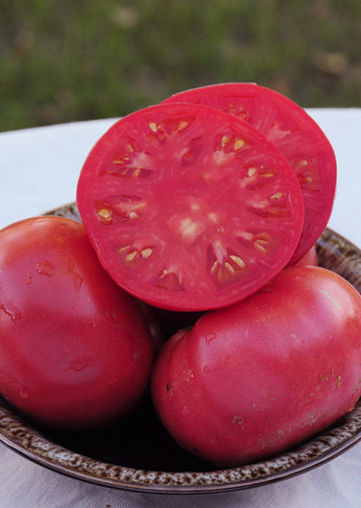 Heirloom June Pink Tomato Seeds