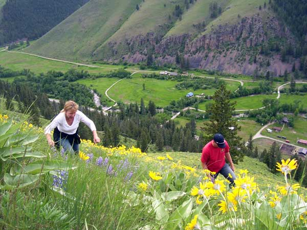 Hiking Trails and hillsides