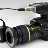 Nikon Digital SLR's