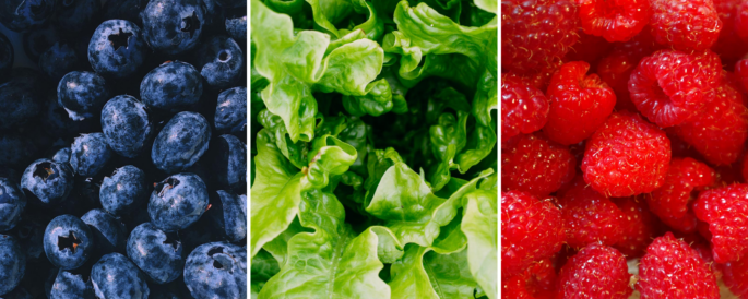 Fruits & Veggies Month - blueberries, lettuce, strawberries