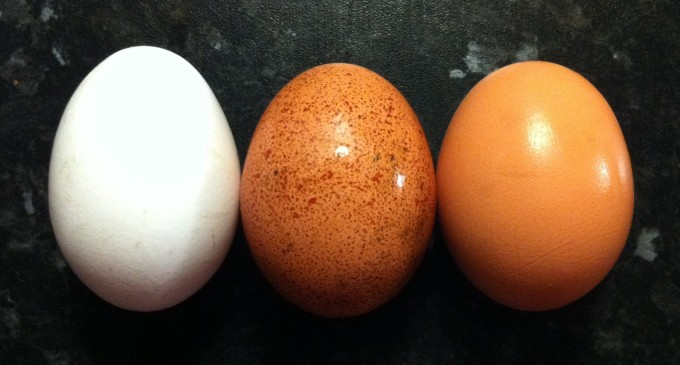 Yes, Eggs can be Part of a Healthy Diet!