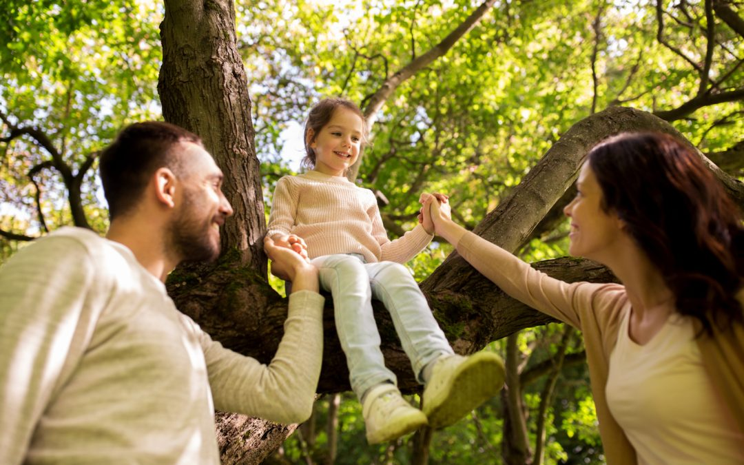 Secure Your Family Tree by Branching Out