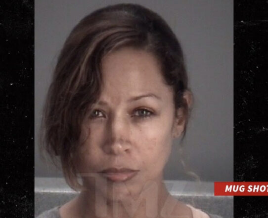 Actor Stacey Dash Arrested on Domestic violence charge !