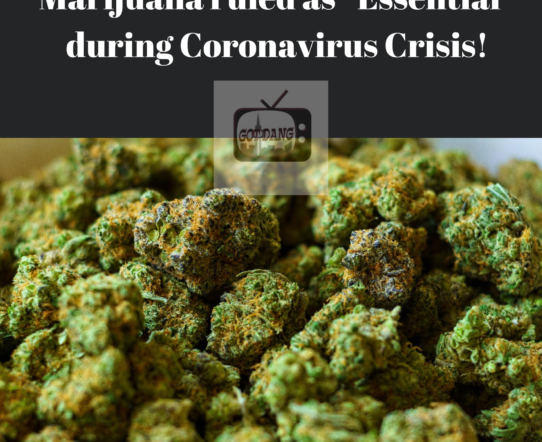 Marijuana outlets will remain open during crisis