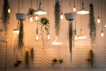 A collection of pendant lights