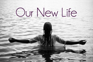 Our-New-Life-2