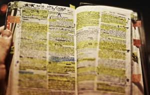 bible worn