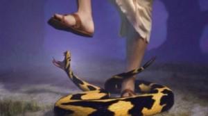 Crush-The-Serpent