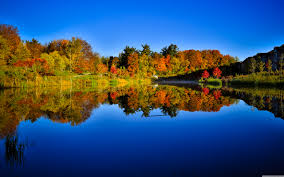 reflection-fall