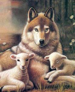 wolf_lamb3