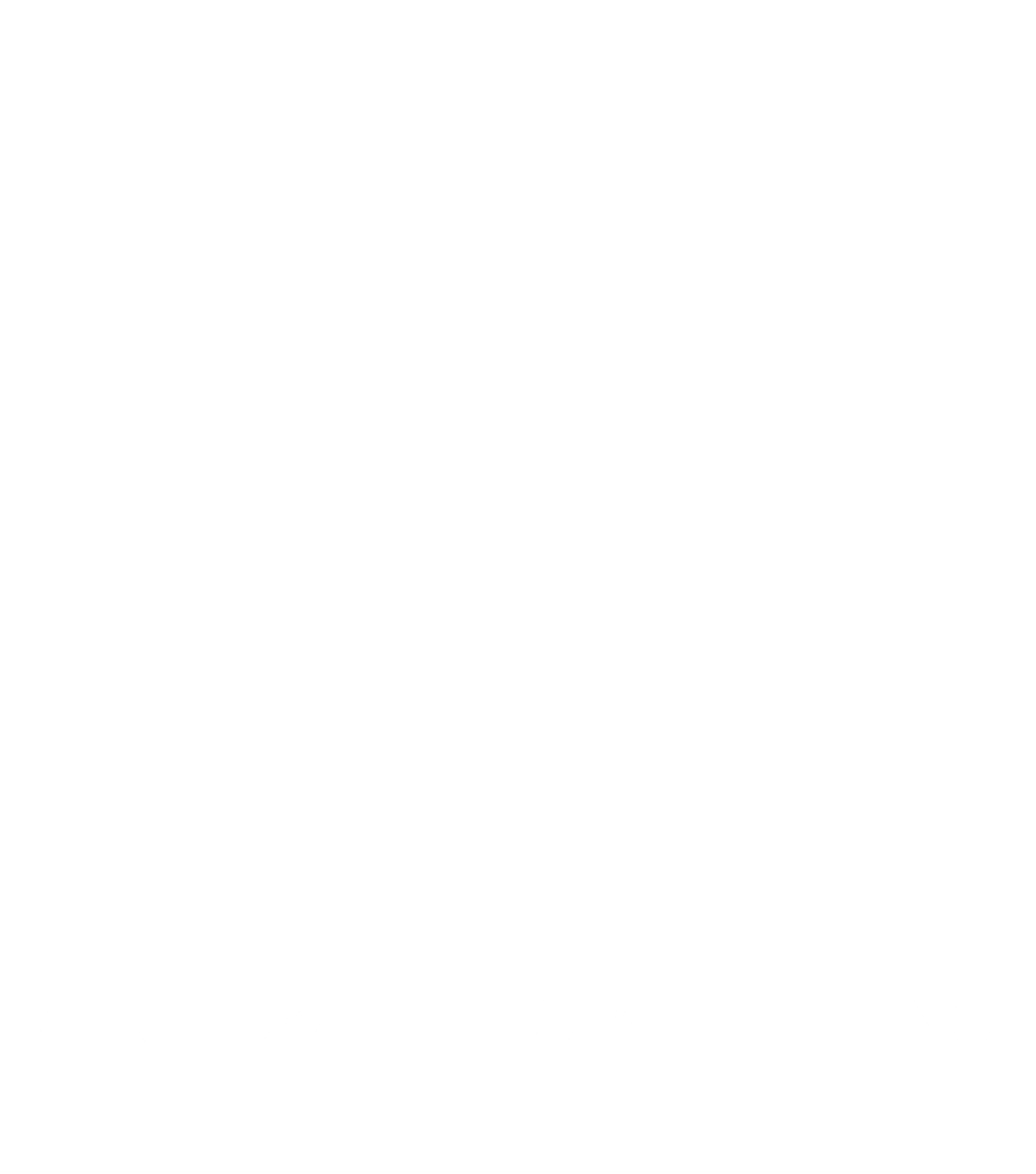 VERTICAL SPECIALTIES INC.