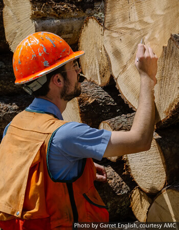 Mountain Region - managing Maine's forests.