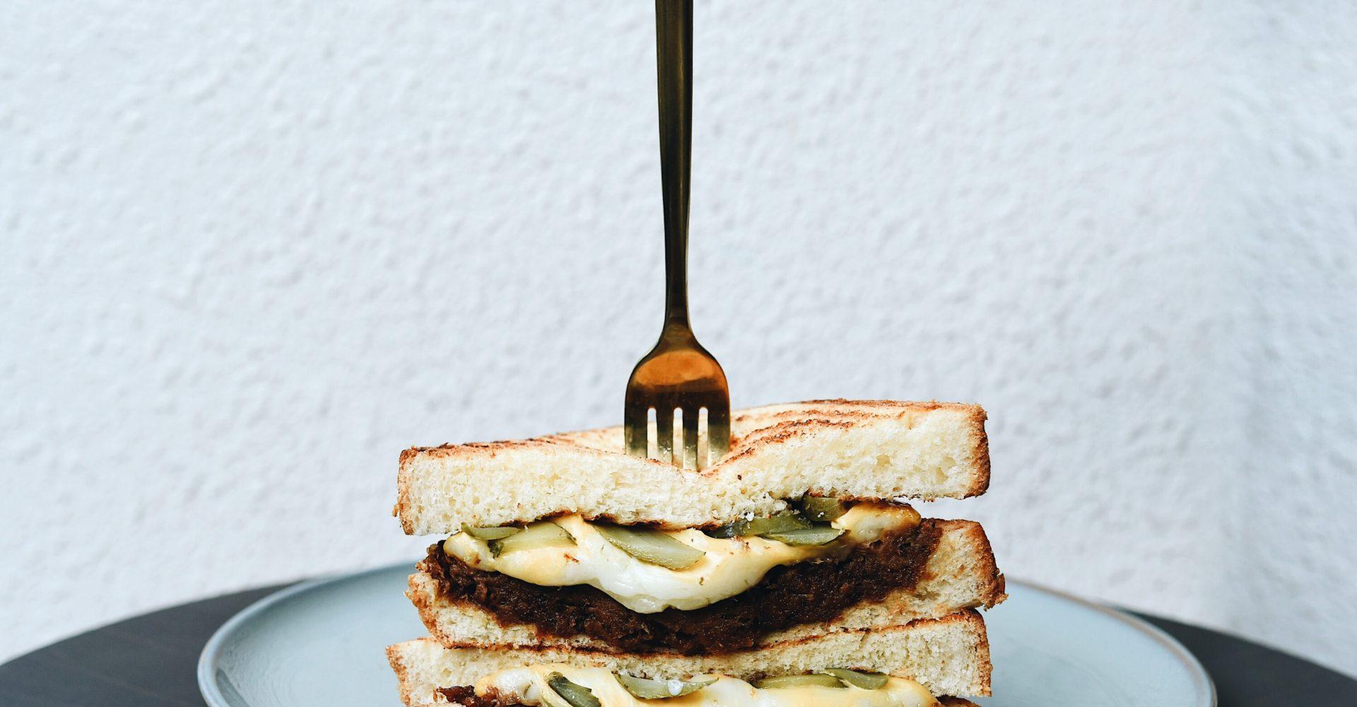 Nesuto-Food-on-Fork