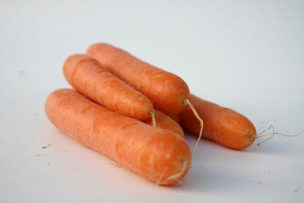 carrot-4-1258528