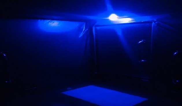 Blue Safety Light