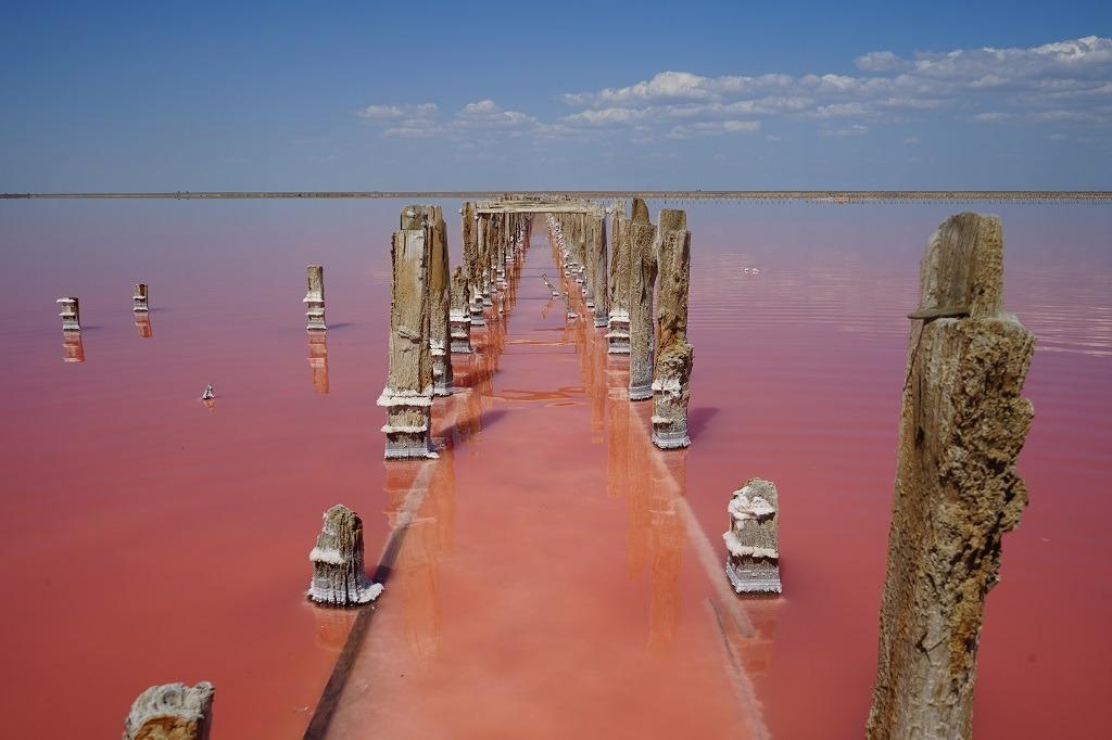 Best Pink Lake In Ukraine