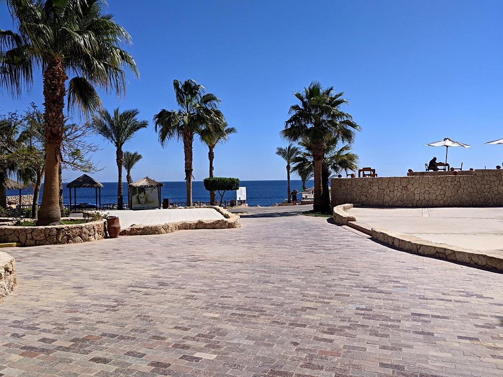 Hilton Sharks Bay