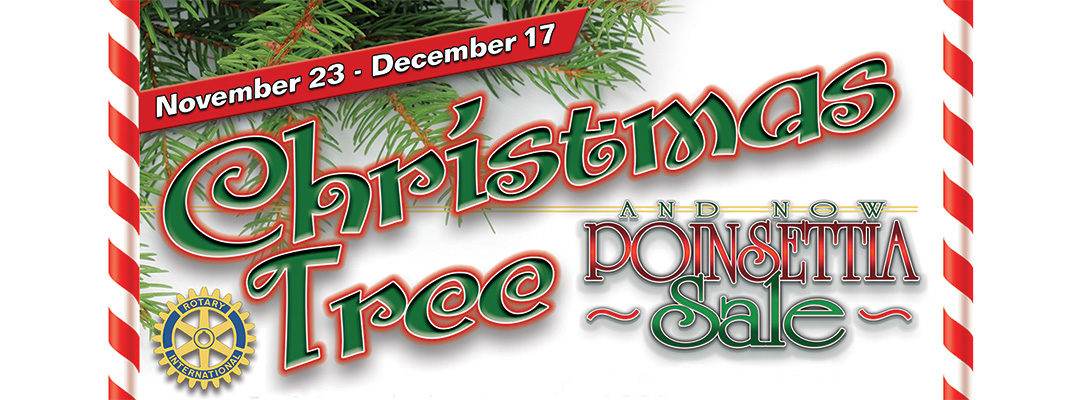 Christmas Tree & Poinsettia Sale 2019