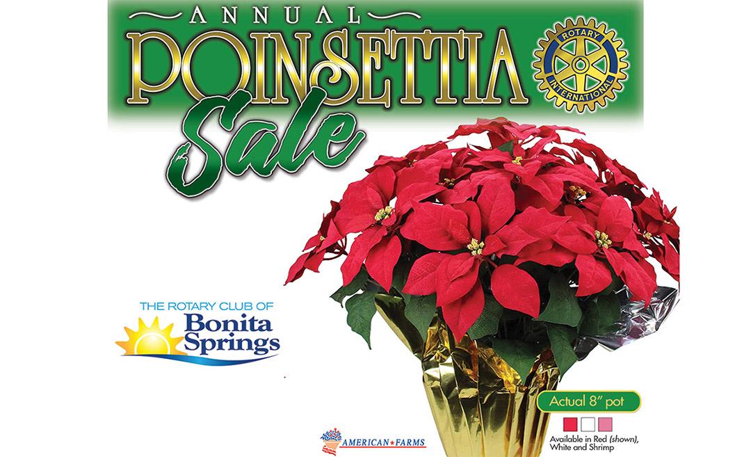 Poinsettia Sale 2020