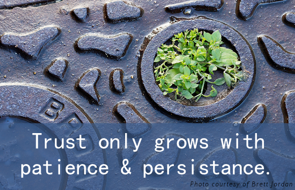 Trust Patience Persistance