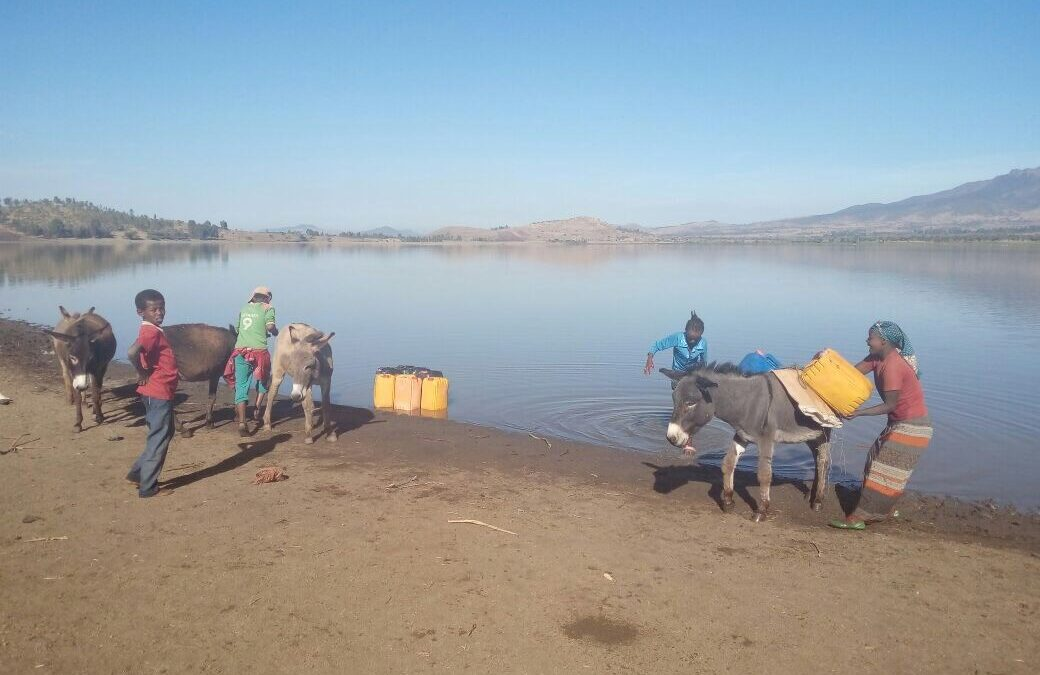 Ethiopian Water Crisis: Know the Facts