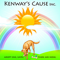Kenways Cause 2