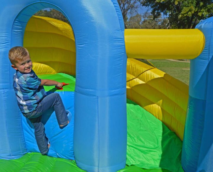 curved slide climbing wall
