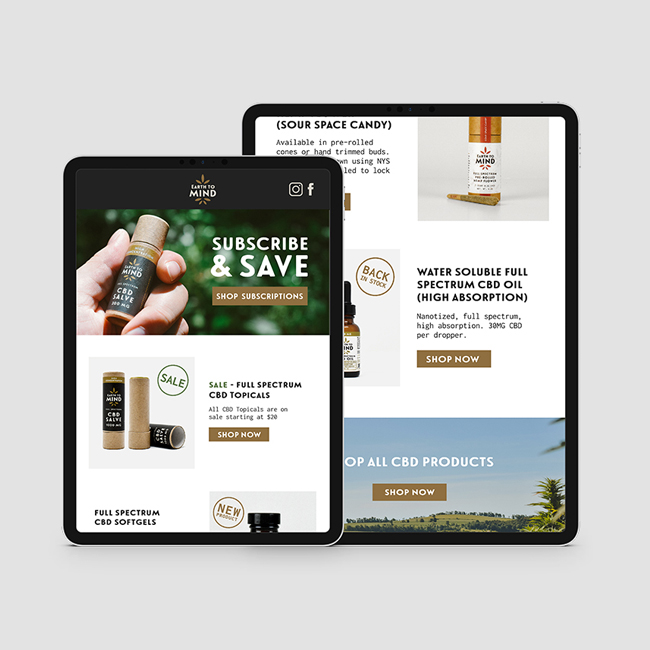 CBD marketing and website design for Earth to Mind