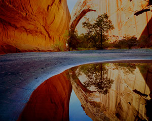 Reflection Pool, Curved Sandbar, Forming Arches, Escalante River Side Canyon, Escalante Wilderness, now Grand Staircase-Escalante National Monument, Utah, copyright 1968 by Philip Hyde.