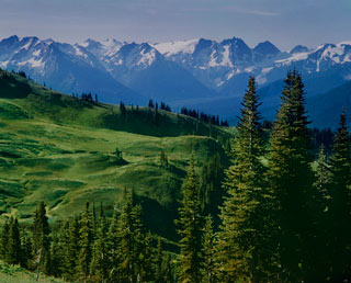 Tenpeak Range From Slopes Above Image Lake,  Glacier Peak Wilderness - North Cascades National Park, Washington, copyright 1956 Philip Hyde.