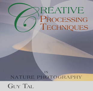 Cover, Creative Processing Techniques In Nature Photography By Guy Tal.