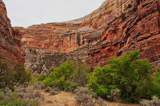 Upper Jones Hole Near Fish Hatchery, Dinosaur National Monument, Utah, copyright 2013 David Leland Hyde.