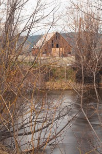 Olsen Barn Through The Willows Across The North Fork Feather River, Chester, California, copyright 2015 David Leland Hyde. The Mountain Maidu used willows to make baskets that were unique in all the world. (To see larger click on image.)