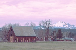 Olsen Barn, Chester and Mt. Lassen Near Lake Almanor, California, copyright 2015 David Leland Hyde. (To see large, click on image.)