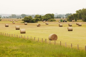 Fresh Round Hay Bales Near Ogallala, Nebraska, copyright 2015 David Leland Hyde. A high humidity muggy day in the Midwest. Trees and greenery along the roadside are more lush than Wyoming or other Western states. (Click on image to see large.)