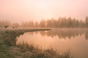 Misty Sunrise, Millpond, Graeagle, California by David Leland Hyde.