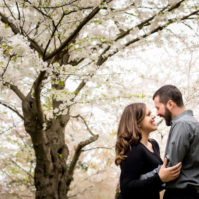 Faith and Jeff – Buffalo History Museum Cherry Blossom Couples Portrait Session