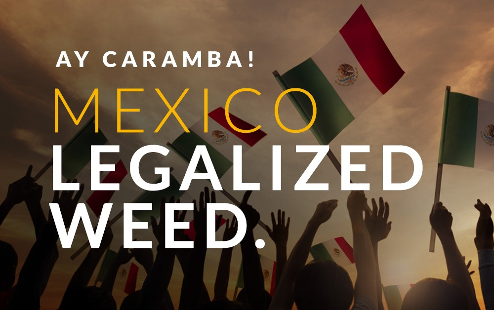 President Elect AMLO promises full legalization in Mexico