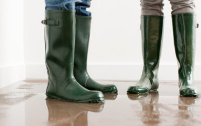 Top Tips for Cleaning Up After The Rain